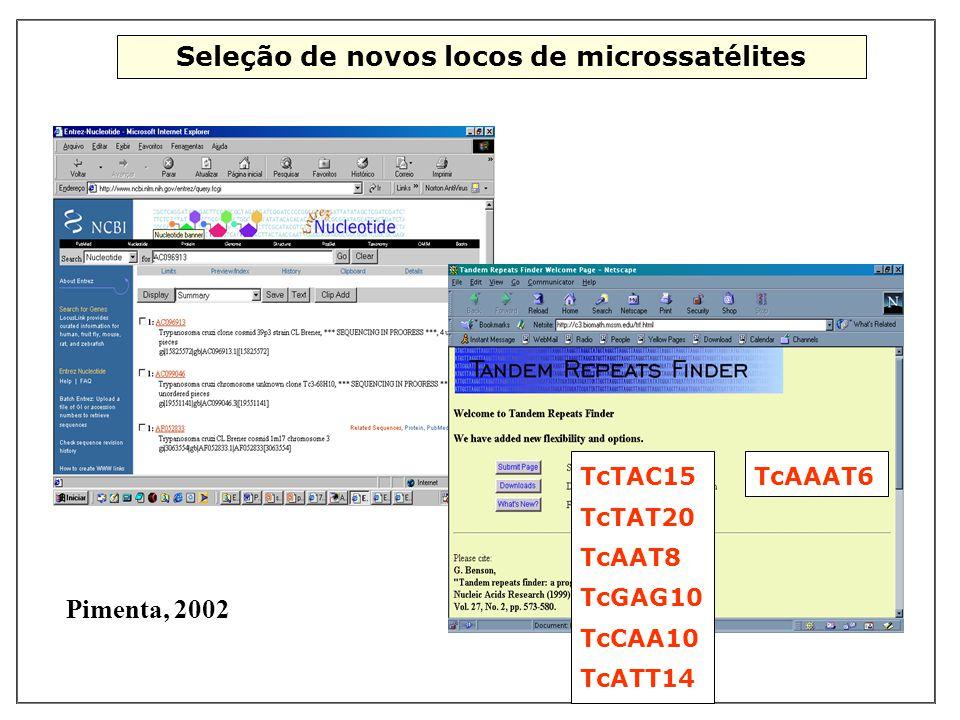 Seleção de novos locos de microssatélites TcTAC15 TcTAT20 TcAAT8 TcGAG10 TcCAA10 TcATT14 TcAAAT6 Pimenta, 2002