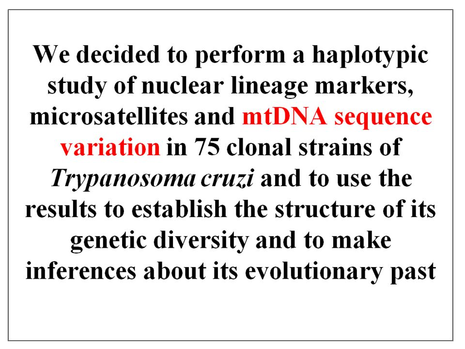 We decided to perform a haplotypic study of nuclear lineage markers, microsatellites and mtDNA sequence variation in 75 clonal strains of Trypanosoma