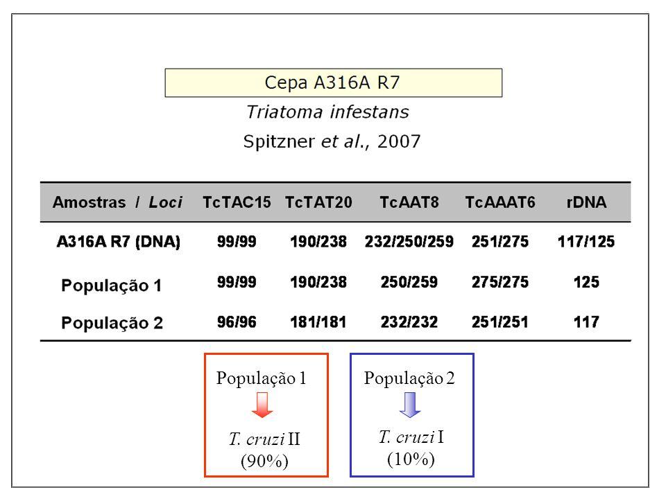 População 1 T. cruzi II (90%) População 2 T. cruzi I (10%)