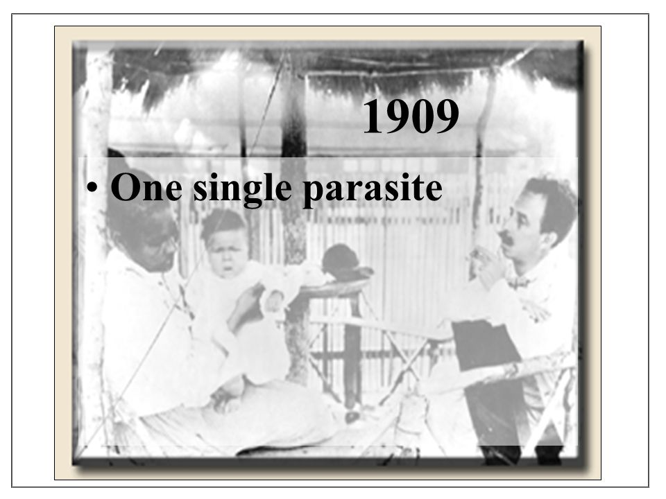1909 One single parasite