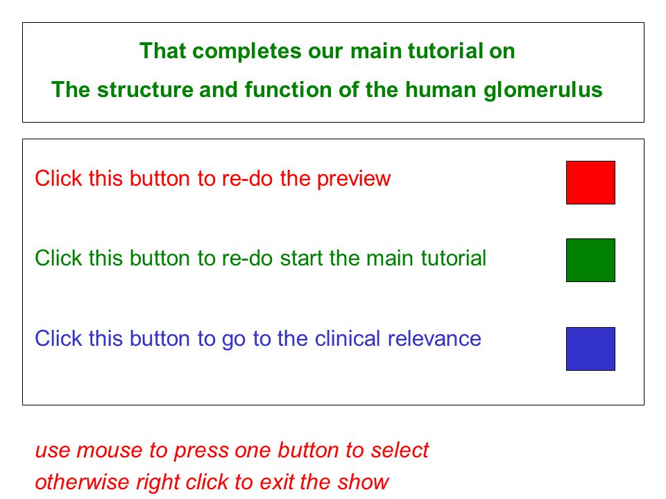 Click this button to re-do the preview Click this button to re-do start the main tutorial Click this button to go to the clinical relevance use mouse to press one button to select otherwise right click to exit the show That completes our main tutorial on The structure and function of the human glomerulus