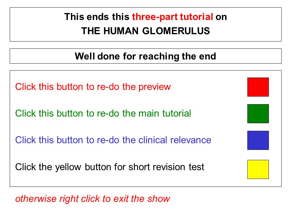 Click this button to re-do the preview Click this button to re-do the main tutorial Click this button to re-do the clinical relevance Click the yellow button for short revision test This ends this three-part tutorial on THE HUMAN GLOMERULUS otherwise right click to exit the show Well done for reaching the end
