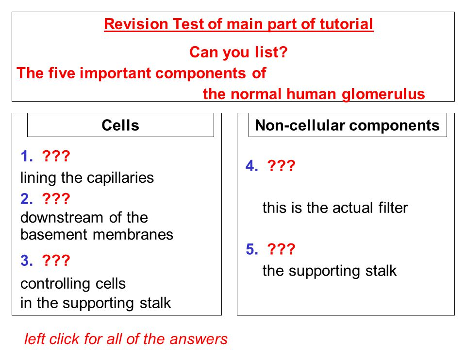 left click for all of the answers Revision Test of main part of tutorial Can you list.