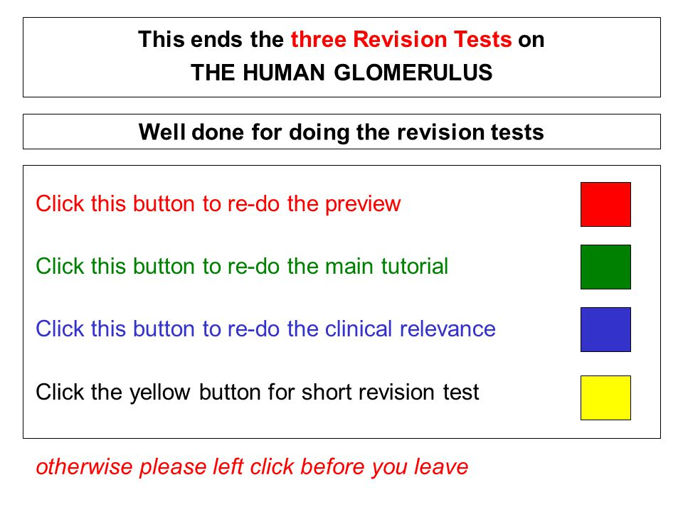 Click this button to re-do the preview Click this button to re-do the main tutorial Click this button to re-do the clinical relevance Click the yellow button for short revision test This ends the three Revision Tests on THE HUMAN GLOMERULUS otherwise please left click before you leave Well done for doing the revision tests