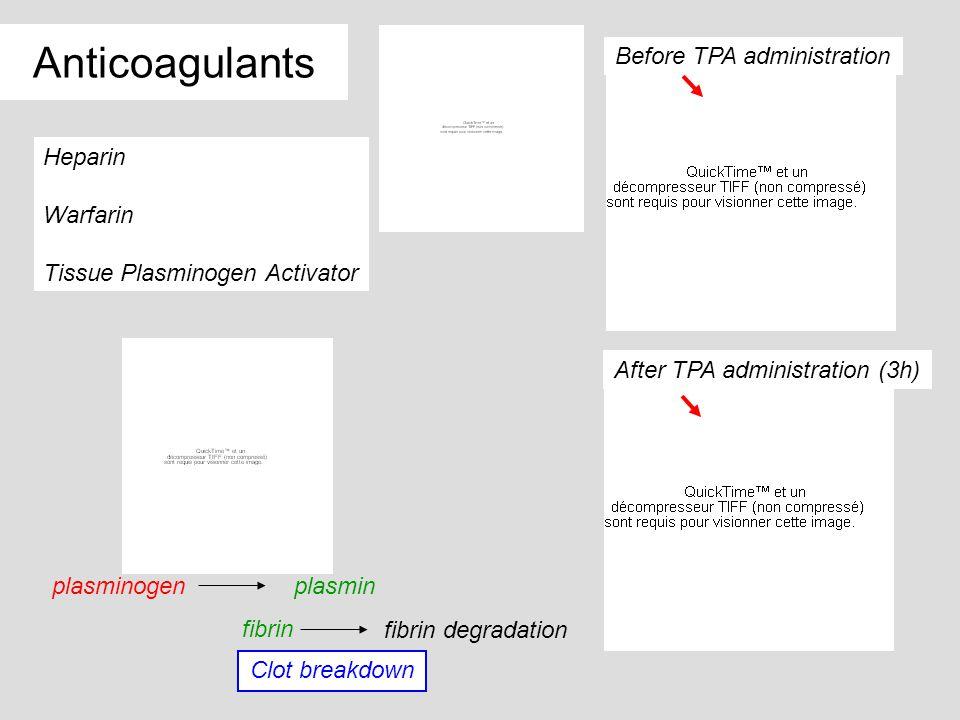Before TPA administration After TPA administration (3h) Anticoagulants Heparin Warfarin Tissue Plasminogen Activator plasminogenplasmin Clot breakdown