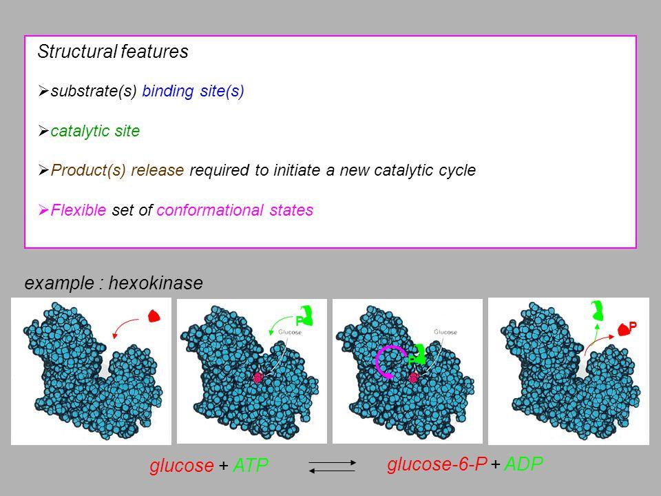 Hypothesis Michaelis-Menten model of enzyme kinetics Scheme k on k off k cat E + SE.SE + P where Michaelis-Menten equation Chemical processes Conservation equations Steady state [E] 0 << [S] 0
