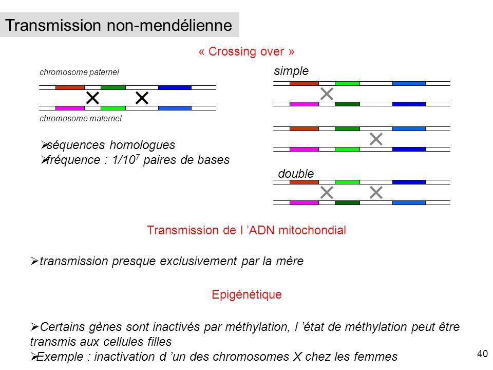 « Crossing over » Transmission de l ADN mitochondial transmission presque exclusivement par la mère simple double séquences homologues fréquence : 1/1