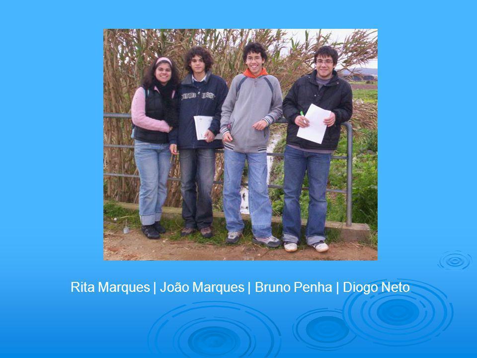 Rita Marques | João Marques | Bruno Penha | Diogo Neto