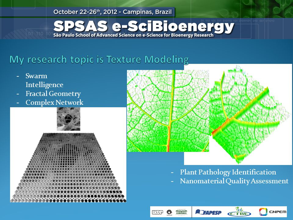 -Swarm Intelligence -Fractal Geometry -Complex Network -Plant Pathology Identification -Nanomaterial Quality Assessment