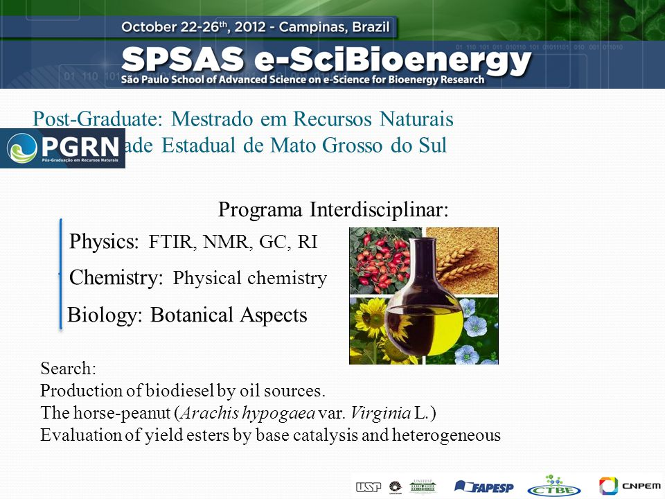 Post-Graduate: Mestrado em Recursos Naturais Universidade Estadual de Mato Grosso do Sul Programa Interdisciplinar: Physics: FTIR, NMR, GC, RI Chemistry: Physical chemistry Biology: Botanical Aspects Search: Production of biodiesel by oil sources.