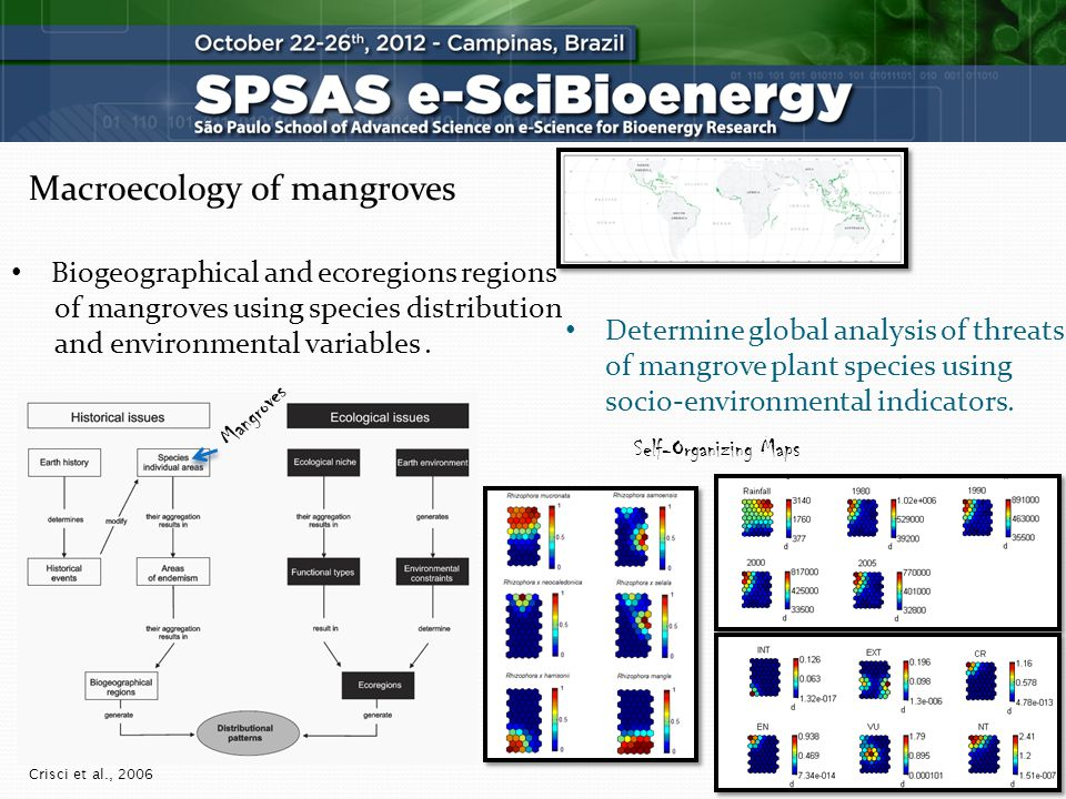 Macroecology of mangroves Determine global analysis of threats of mangrove plant species using socio-environmental indicators.