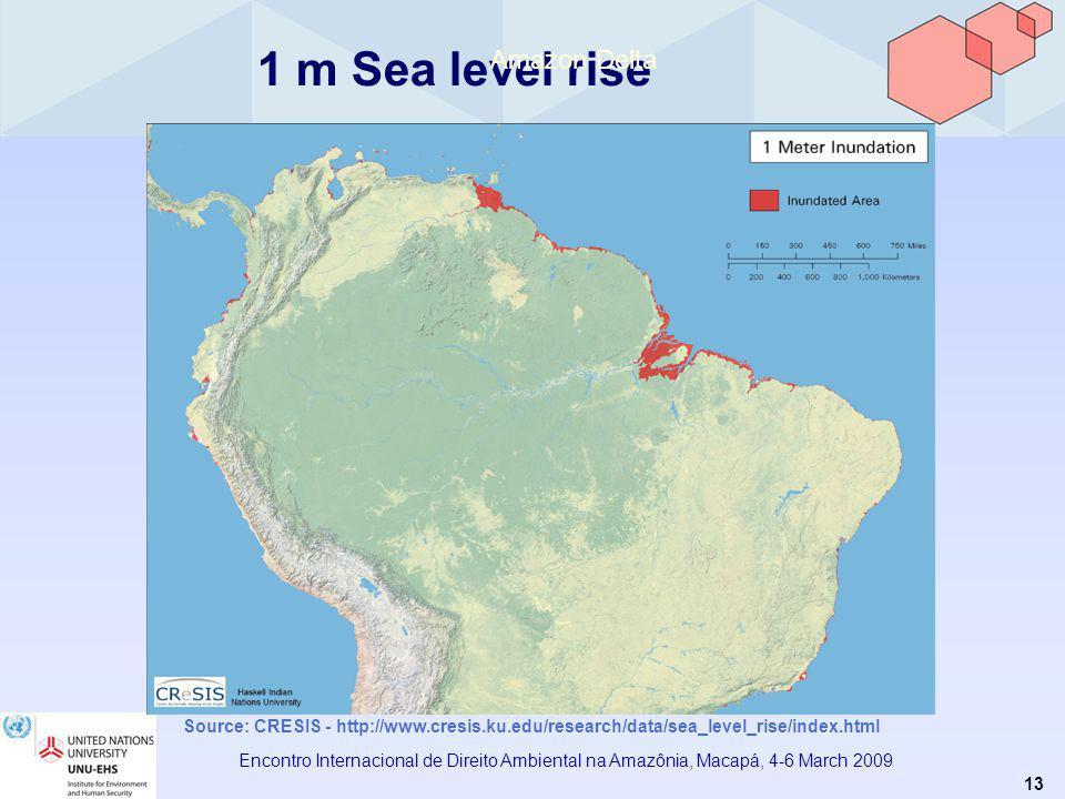 13 Encontro Internacional de Direito Ambiental na Amazônia, Macapá, 4-6 March 2009 1 m Sea level rise Amazon Delta Source: CRESIS - http://www.cresis.ku.edu/research/data/sea_level_rise/index.html