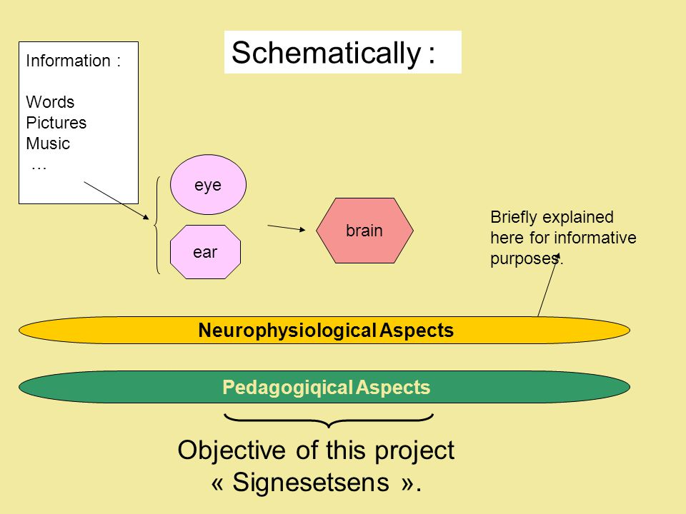 Information : Words Pictures Music … eye brain Neurophysiological Aspects Pedagogiqical Aspects ear Objective of this project « Signesetsens ».
