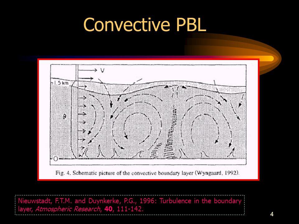 4 Convective PBL Nieuwstadt, F.T.M.