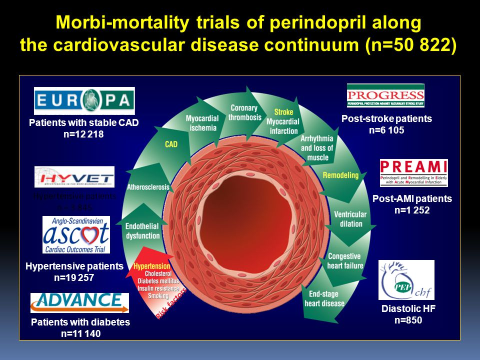Morbi-mortality trials of perindopril along the cardiovascular disease continuum (n=50 822) Hypertensive patients n=19 257 Patients with stable CAD n=12 218 Patients with diabetes n=11 140 Post-stroke patients n=6 105 Post-AMI patients n=1 252 Diastolic HF n=850 Hypertensive patients n = 3 845