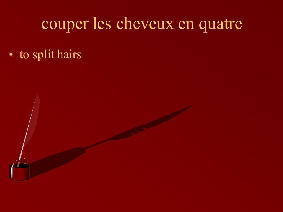 couper les cheveux en quatre to split hairs