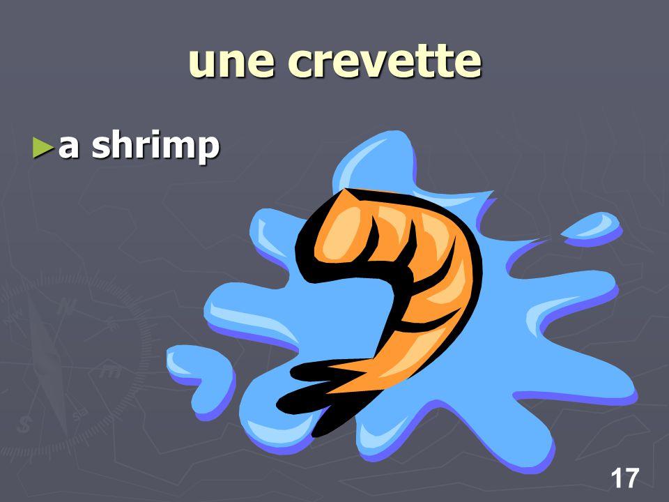 17 une crevette a shrimp a shrimp