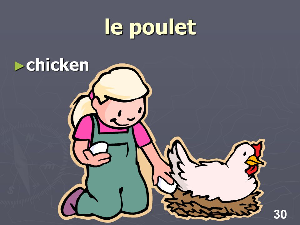 30 le poulet chicken chicken
