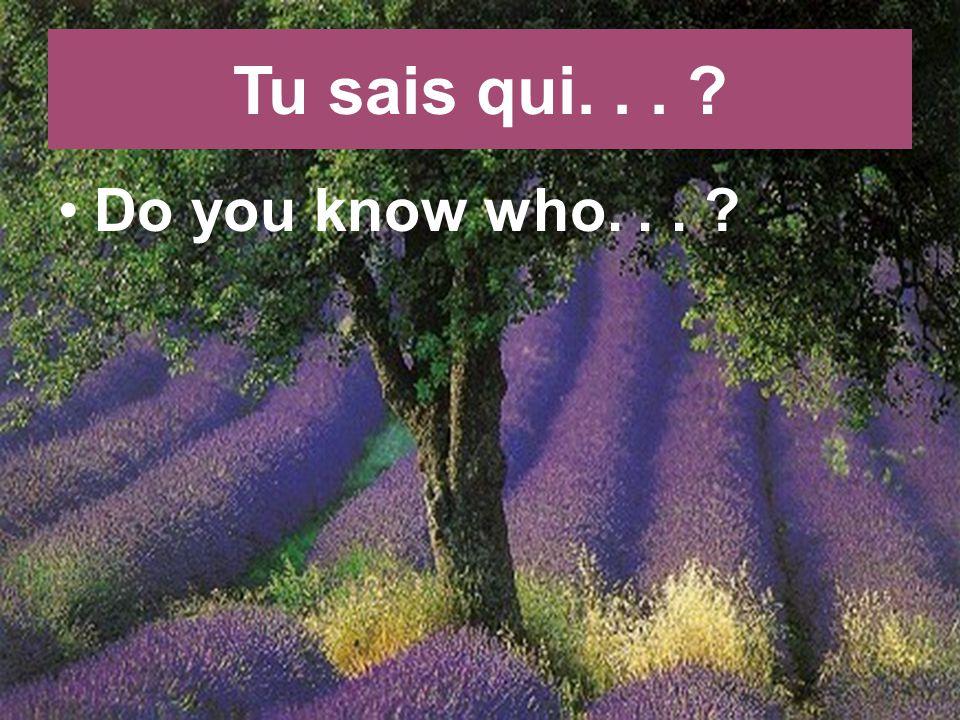 Tu sais qui... Do you know who...
