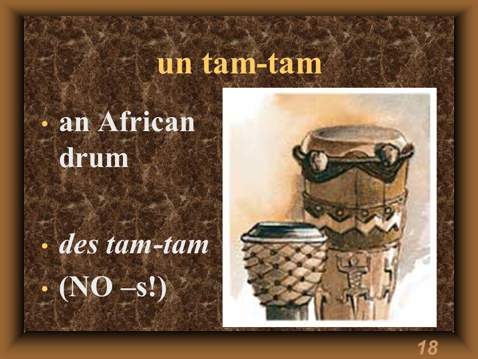 18 un tam-tam an African drum des tam-tam (NO –s!)