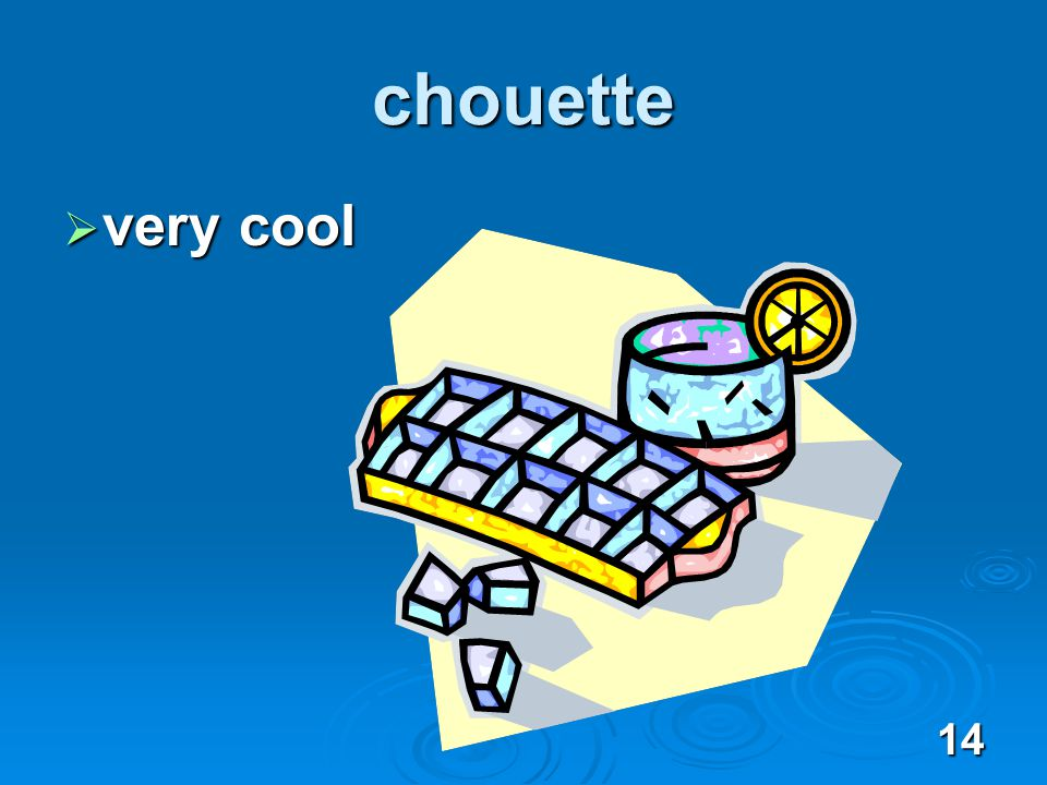 14 chouette very cool very cool