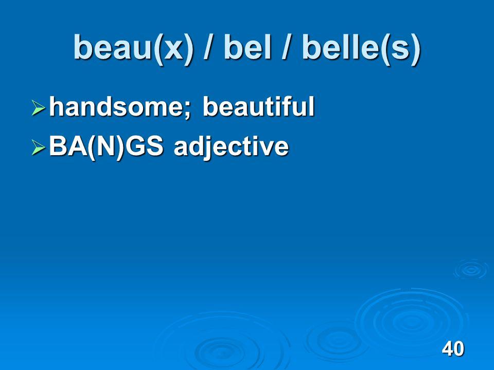 40 beau(x) / bel / belle(s) handsome; beautiful handsome; beautiful BA(N)GS adjective BA(N)GS adjective