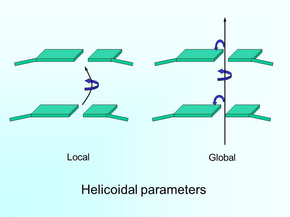 Helicoidal parameters Local Global