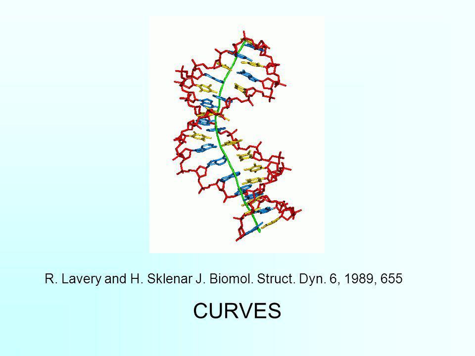 CURVES R. Lavery and H. Sklenar J. Biomol. Struct. Dyn. 6, 1989, 655