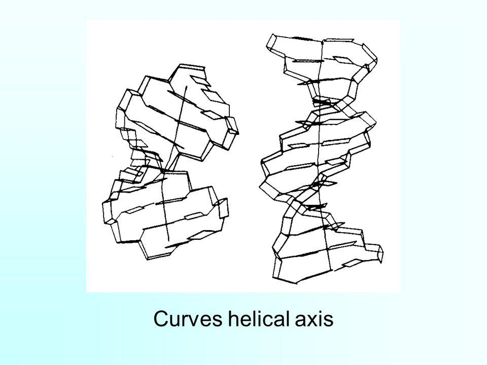 Curves helical axis