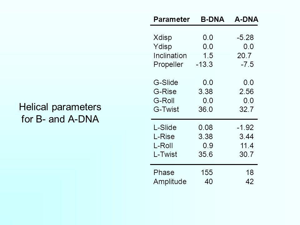 Parameter B-DNA A-DNA Xdisp0.0-5.28 Ydisp0.00.0 Inclination1.520.7 Propeller-13.3-7.5 G-Slide0.00.0 G-Rise3.382.56 G-Roll0.00.0 G-Twist36.032.7 L-Slid