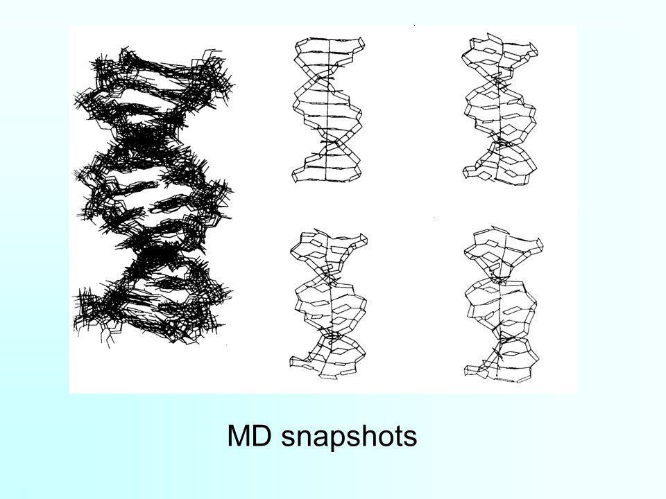 MD snapshots