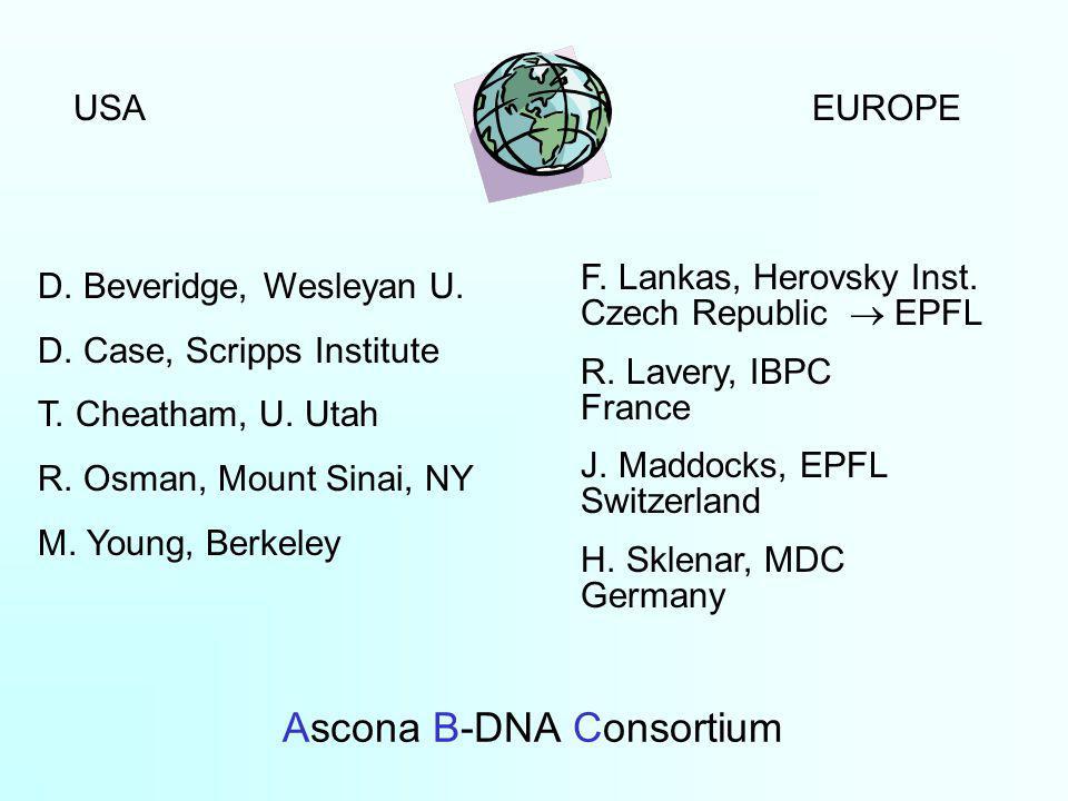 Ascona B-DNA Consortium USAEUROPE D. Beveridge, Wesleyan U.
