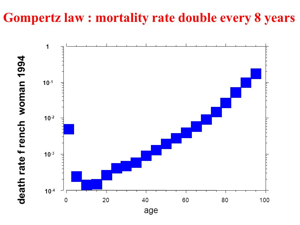 10 -4 10 -3 10 -2 10 -1 1 death rate f rench woman 1994 020406080100 age Gompertz law : mortality rate double every 8 years