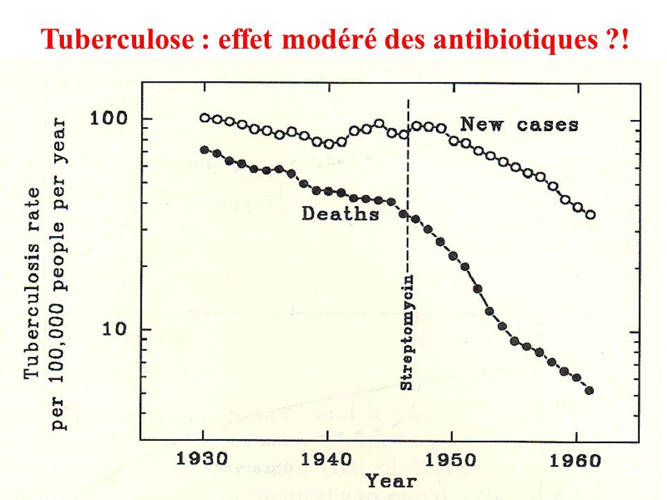 Tuberculose : effet modéré des antibiotiques !