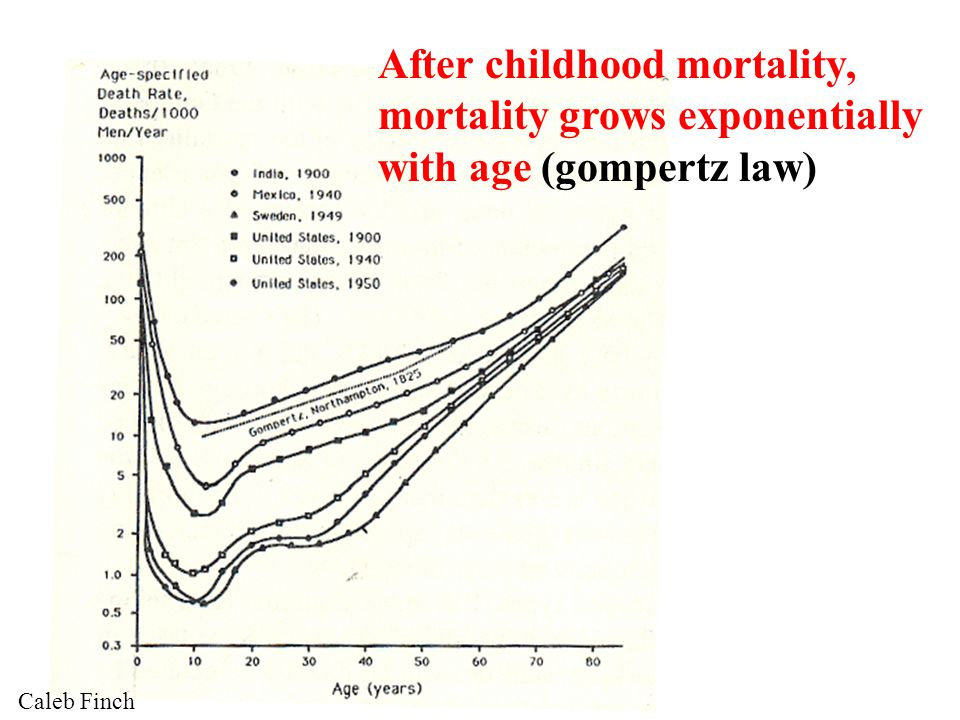 Life expectancy still grows steadily & linearly Oepen, Science 2002