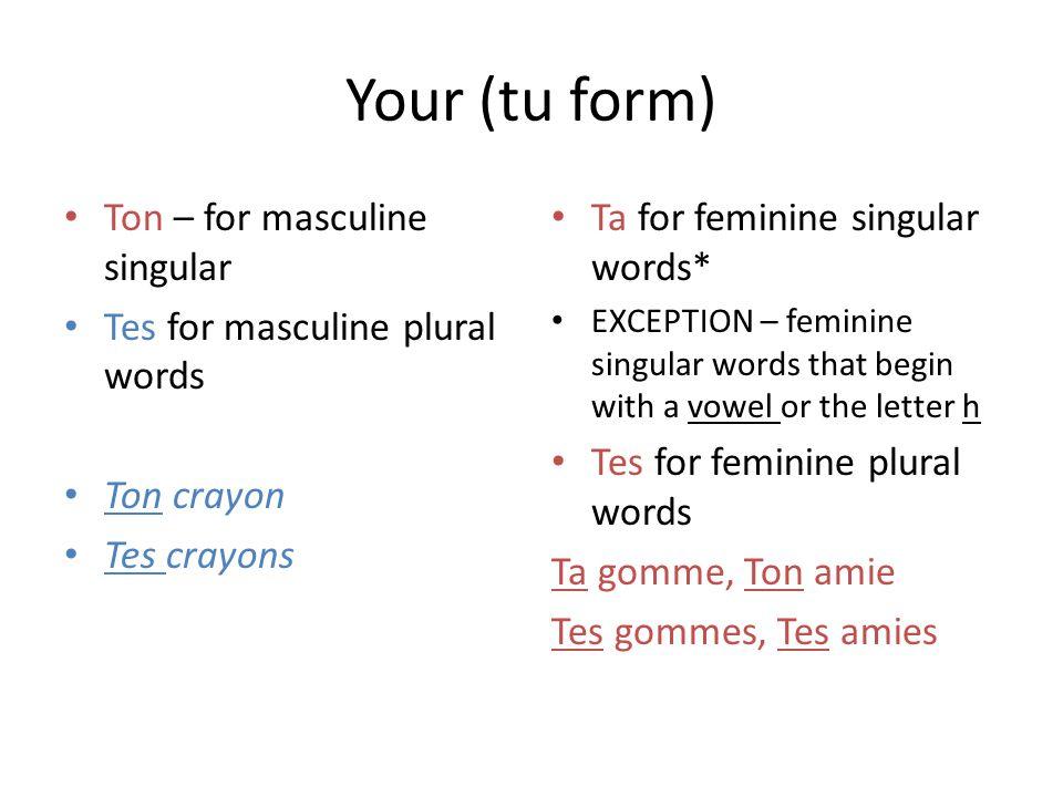Your (tu form) Ton – for masculine singular Tes for masculine plural words Ton crayon Tes crayons Ta for feminine singular words* EXCEPTION – feminine