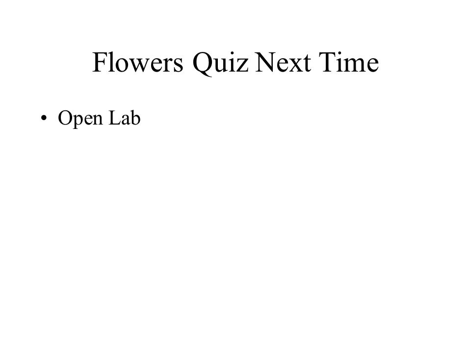 Flowers Quiz Next Time Open Lab
