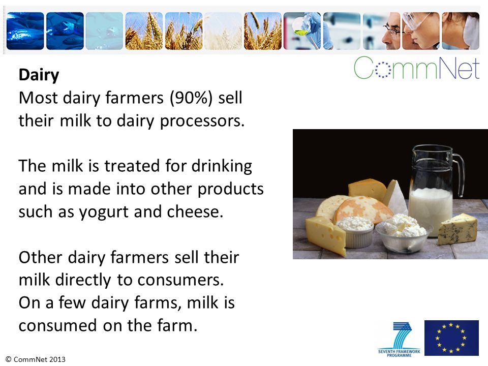 © CommNet 2013 Most dairy farmers (90%) sell their milk to dairy processors.
