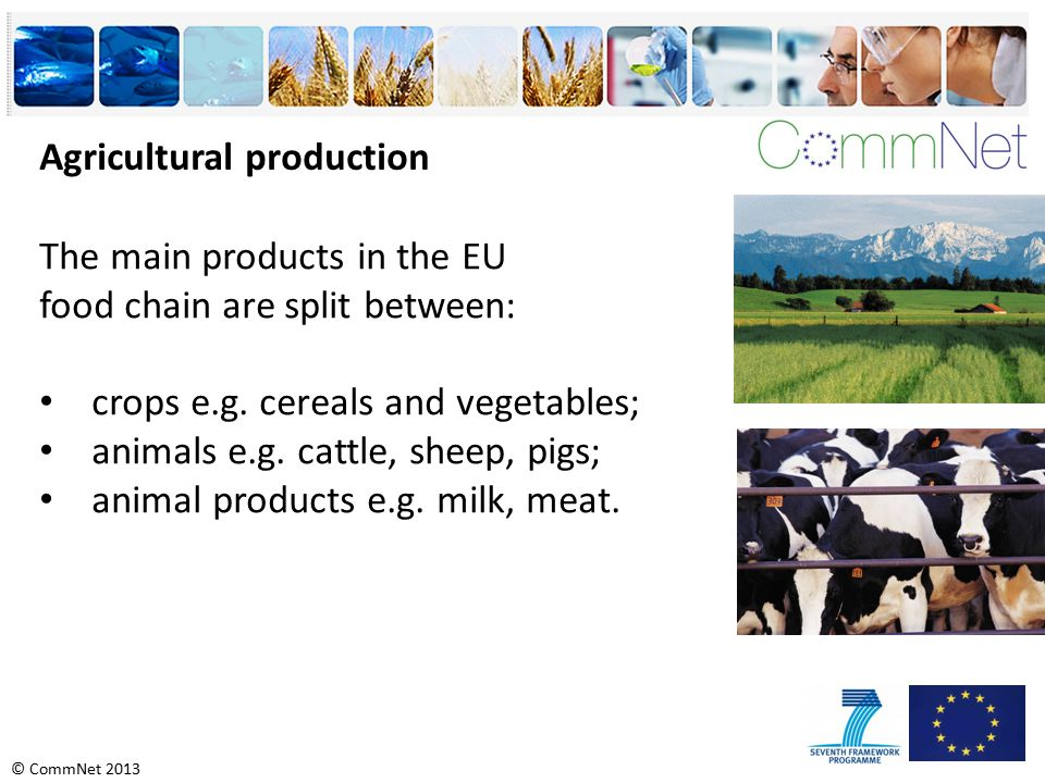 © CommNet 2013 Agricultural production The main products in the EU food chain are split between: crops e.g.