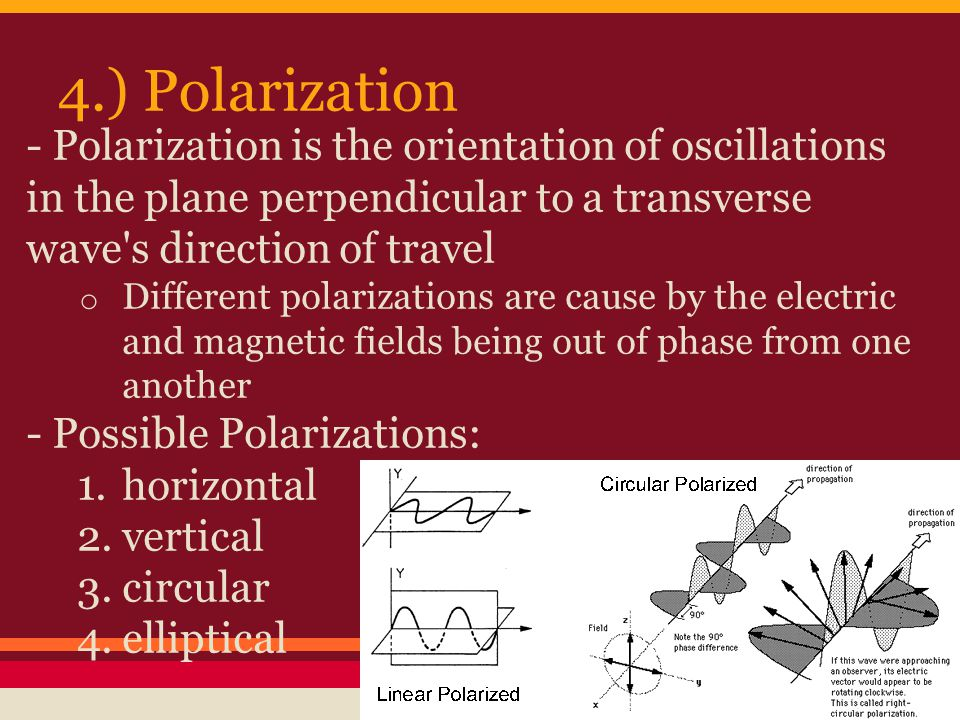 4.) Polarization - Polarization is the orientation of oscillations in the plane perpendicular to a transverse wave s direction of travel o Different polarizations are cause by the electric and magnetic fields being out of phase from one another - Possible Polarizations: 1.horizontal 2.vertical 3.circular 4.elliptical