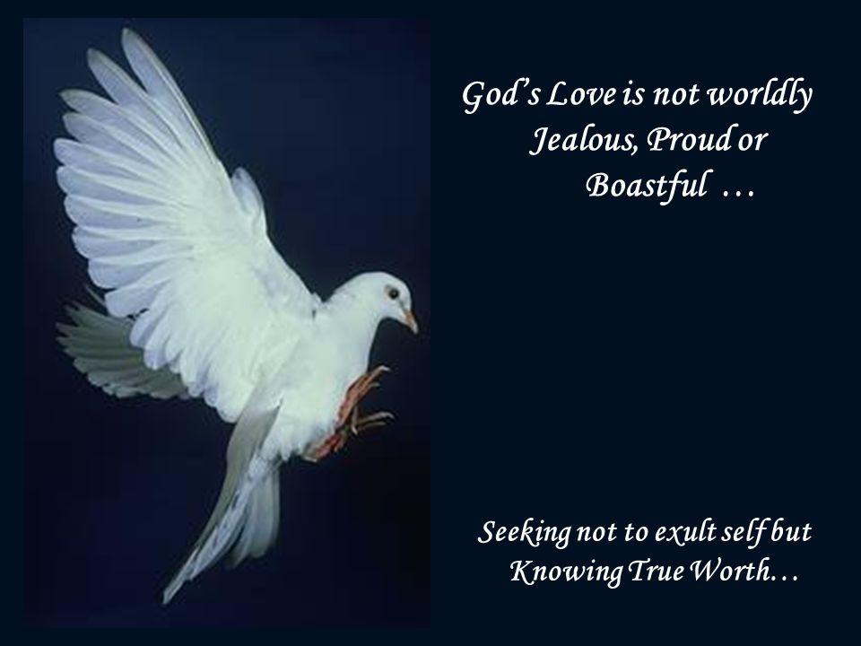 Lyric on the wings of a snow white dove lyrics : Lyrics For On The Wings Of A Snow White Dove - The Best Dove 2017