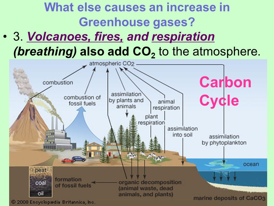 What else causes an increase in Greenhouse gases. 3.