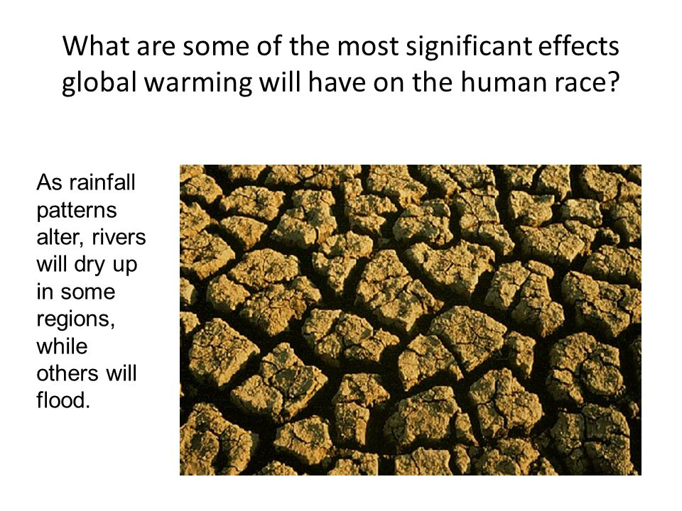 What are some of the most significant effects global warming will have on the human race.