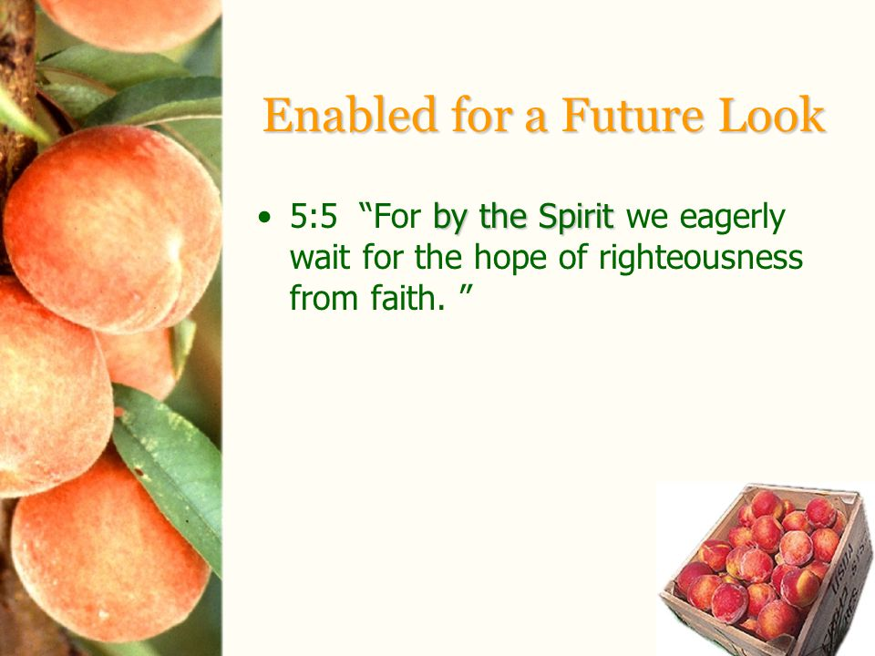 Enabled for a Future Look by the Spirit5:5 For by the Spirit we eagerly wait for the hope of righteousness from faith.