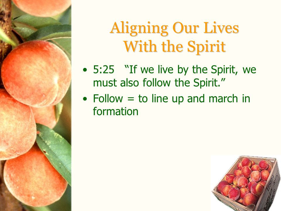 Aligning Our Lives With the Spirit 5:25 If we live by the Spirit, we must also follow the Spirit. Follow = to line up and march in formation