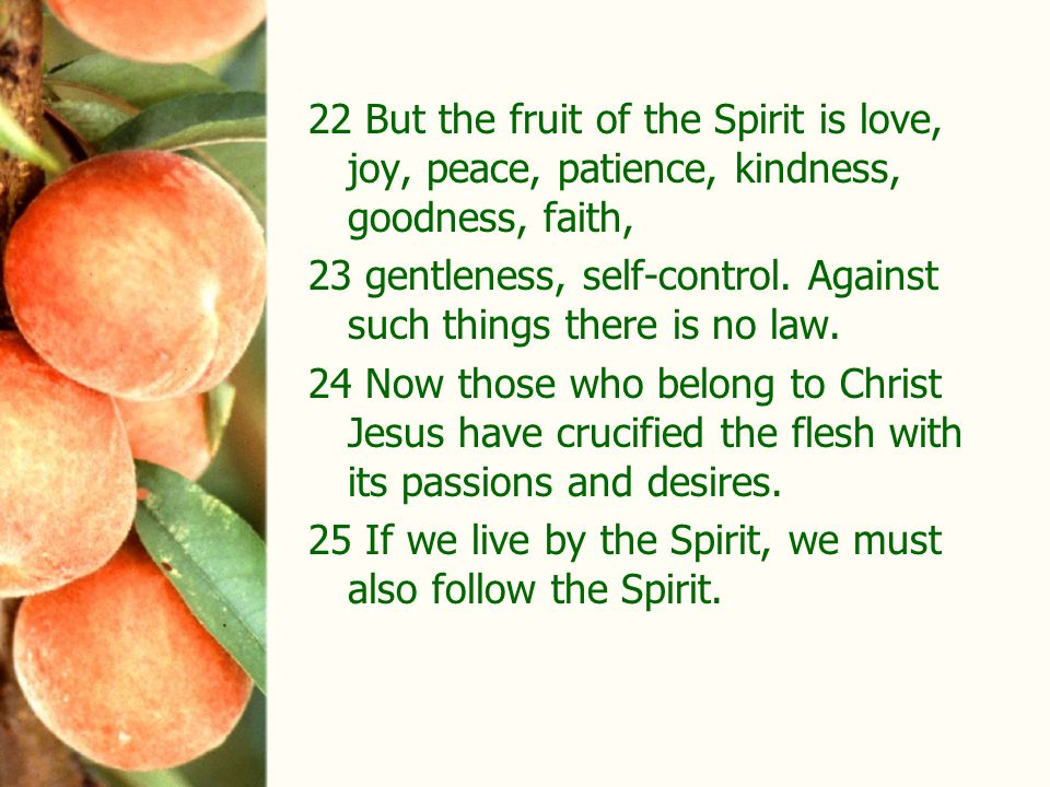 22 But the fruit of the Spirit is love, joy, peace, patience, kindness, goodness, faith, 23 gentleness, self-control.