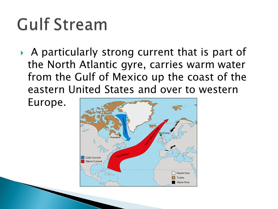  A particularly strong current that is part of the North Atlantic gyre, carries warm water from the Gulf of Mexico up the coast of the eastern United States and over to western Europe.