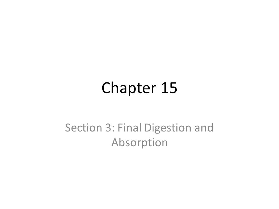 Chapter 15 Section 3: Final Digestion and Absorption