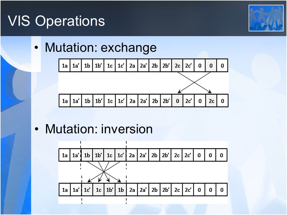 VIS Operations Mutation: exchange Mutation: inversion