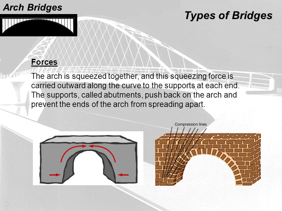 Forces The arch is squeezed together, and this squeezing force is carried outward along the curve to the supports at each end. The supports, called ab